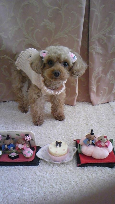 お誕生日タバサ