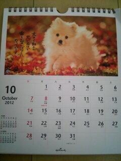 10月です!!